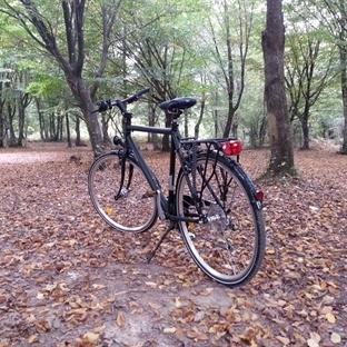 Bisiklet Kullanmak Nasıl Öğrenilir? Kolay Teknik!