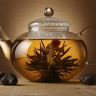 Bitki Çayları ile Kışın Ev İlacınızı Hazırlayın!