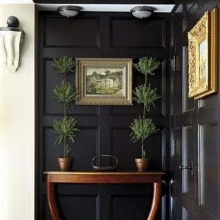 Evlerde Canlı Bitki Modası