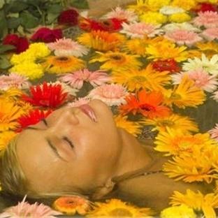 Mucize Aromaterapi İle Sağlık Bulun