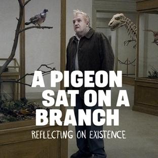 İnsanları Seyreden Güvercin İncelemesi