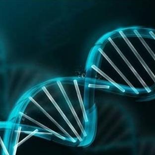 Radyoterapi kanser hücrelerini nasıl öldürür?