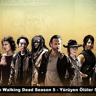 The Walking Dead ile Takım Çalışması Analizi
