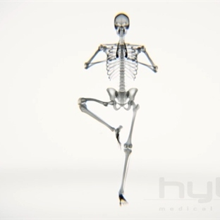 Yoga yapan bir insanın iskelet sisteminin videosu