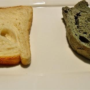 Bayatlamayan Ekmeğin Hikayesi