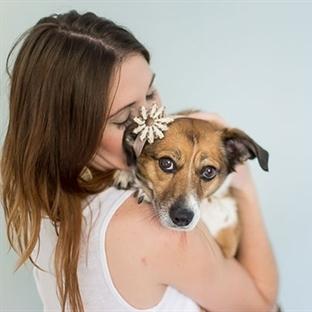Bebek Köpek ile Aile Fotoğrafları Çeken Çift