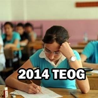 Çocuklarınız TEOG sınavına Nasıl Hazırlanmalı?