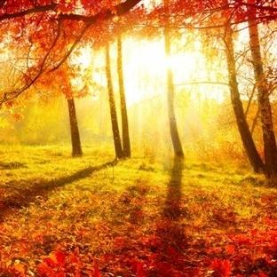 Sonbahar Ayrılığı Anlatır!