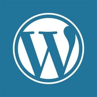 WordPress Portfolyo Tema Örnekleri