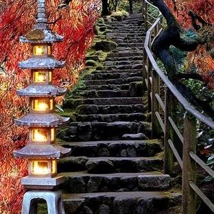 Büyülü Japon Bahçeleri