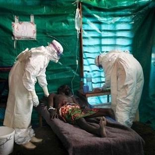 Ebola Virüsünün 2014'de Yaptığı Büyük Yıkım