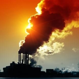 Global Isınmaya Karşın Karbon Hapseden Sünger