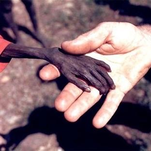 İnsanlığa Dair En Etkileyici Fotoğraflar