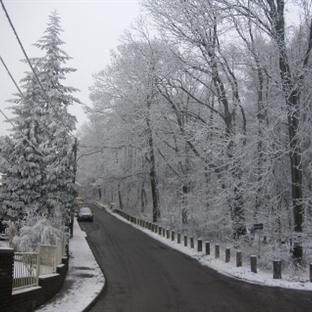 Viyana'nın İklimi