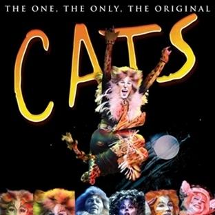 Cats'in Ardından