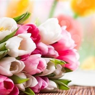 Çiçekler nasıl daha uzun süre dayanır?