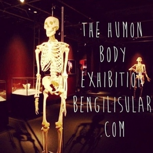 Gezdim - Gördüm : The Humon Body Exhibition