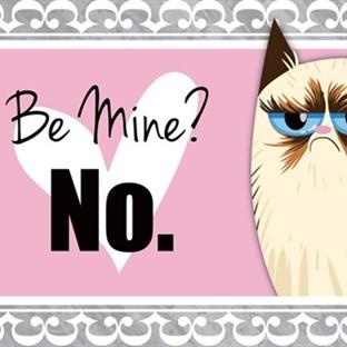 Grumpy Cat Sevgililer Günü Mesajları