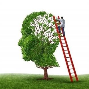 Hafızanızı Güçlendirmek İçin Öneriler