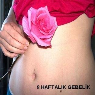 Hamileliğin 8. Haftası