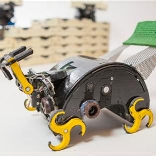 Harvard'dan İnşaat Yapan Robot Sürüsü