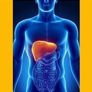 Hepatit B-C karaciğeri vuruyor