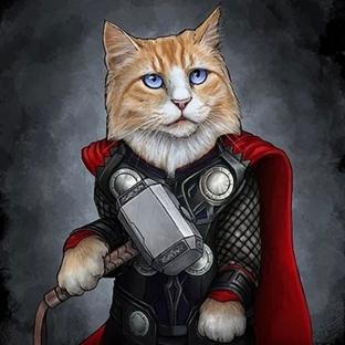 Kediler Kahramanlara Dönüşürse!