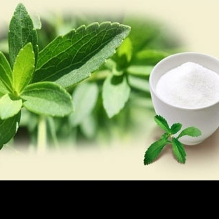Şeker Yerine Doğal Tatlandırıcı Stevia