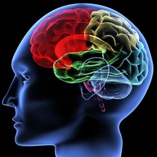 Süper Otobiyografik Hafızalıların Beyni Farklı