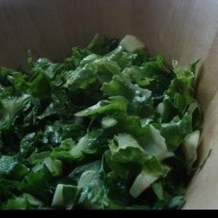Taratorlu Kıvırcık Salata ( Teretür )