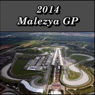 2014 Malezya GP - Yarış Sonucu
