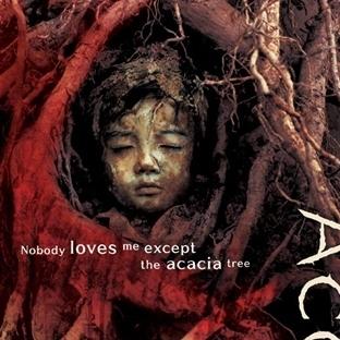Acacia / 2003