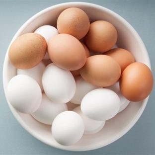 Beyaz Ve Kahverengi Yumurta Arasındaki Farklar