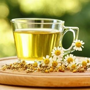 Bitki Çayları Ve İyi Geldiği Hastalıklar