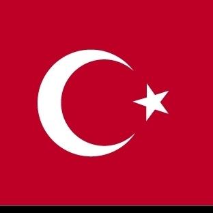 Büyük Türkiye Projesi