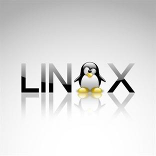 CryEngine'e Linux Desteği Geliyor
