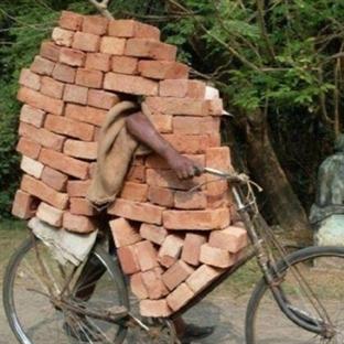 Hindistan'ı görmek için 15 tuhaf neden!