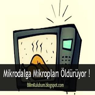 Mikrodalga Mikropları Öldürüyor !