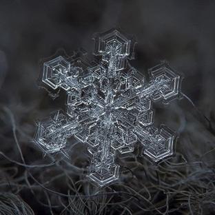 İnanılmaz Su Kristalleri Deneyi