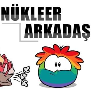 Nükleer Arkadaş