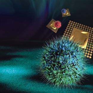 Ölümcül Servikal Kanseri İçin Nanotedavi
