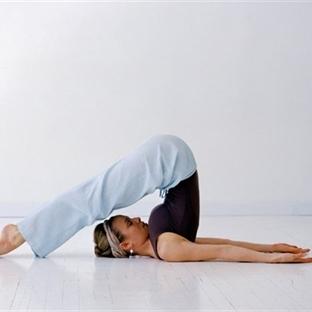 Sizin İçin En Faydalı Egzersiz Programı Hangisi?