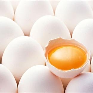 Taze Yumurta Nasıl Belli Olur