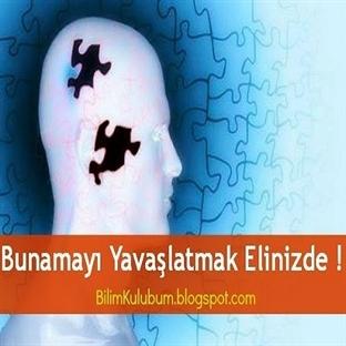 Türk Bilim Adamı Yeni Böcek Türleri Keşfetti !
