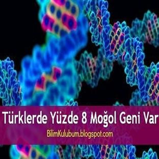 Türklerde Yüzde 8 Moğol Geni Var