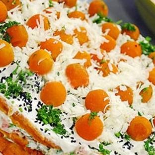 Turşulu Salamlı Salata Pastası