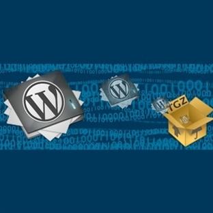 WordPress Alt Klasördeki Bloğu Ana Dizine Taşıma