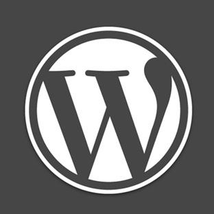 WordPress Metin Editörüne Buton Eklemek