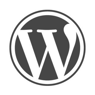 WordPress Widget PHP Kodu Nasıl Çalıştırılır ?