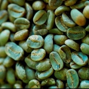 Yeşil Kahve Nedir, Tarifi, Zayıflama